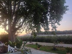 Petit matin sur le Luberon