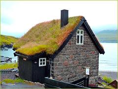 Leynar, Isole Faroe - (477)