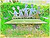 Un banc au jardin des Saules avec effet de mon appareil photo.