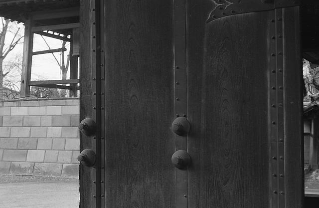 Gate door of a temple
