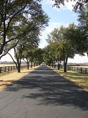 Southfork Drive