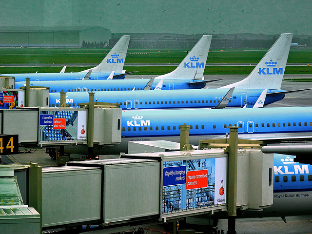 Schiphol airport - Amsterdam (453)