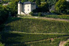 Domaine vin de Savoie