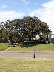 "The ""Grassy Knoll"""