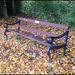 Trevor Lacey seat in autumn