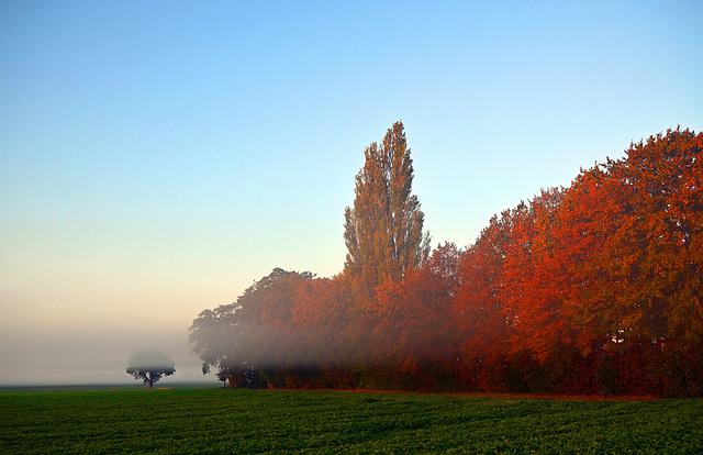 Ein Herbstgedicht