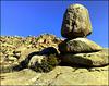 Proud boulder