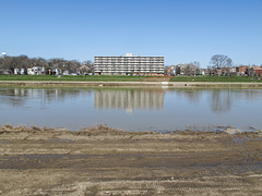 A 1974 senior citizens' highrise, as viewed from over here across the water. And mud!