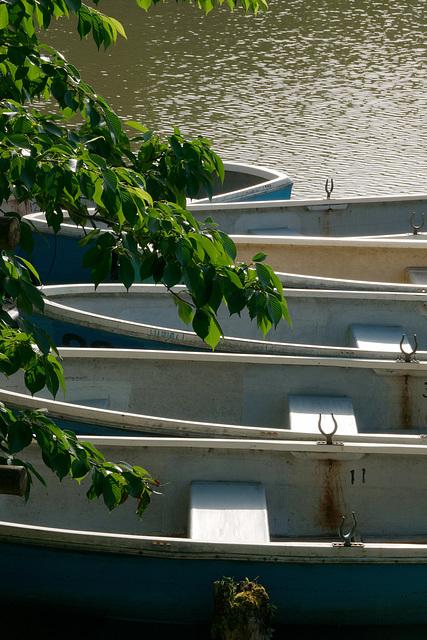 Les barques