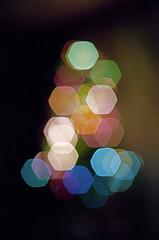 Christmas Tree, 1978