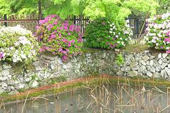Jardin, Kyoto (Kansai, Japon)