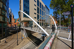 Manchester Curve