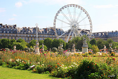 Paris, Tuileries