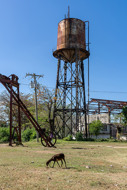 sugar mill - Salvador Rosales