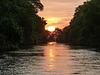 Sunset at the Caroni Swamp, Trinidad