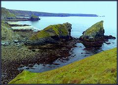 Porthcadjack,  very low tide.