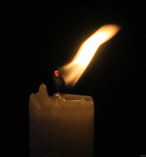 light (pip)