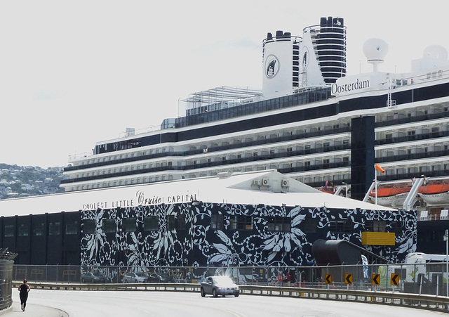 Oosterdam at Wellington (2M) - 27 February 2015