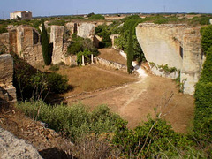 Orange trees quarry.