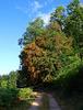 L'automne en août / Autumn in August