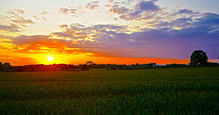 """""""When the sun has set, no candle can replace it."""""""
