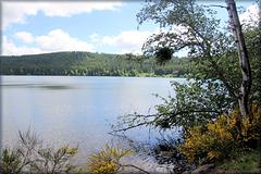 Lac du Bouchet (43) 5 juin 2017.