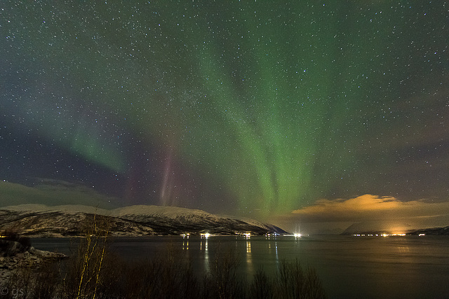 Northern lights and starry sky (PiP)