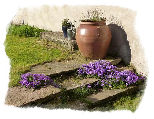 ♥ Le vieux jardin ♥
