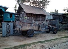 Tracteur laotien 100% pure laine