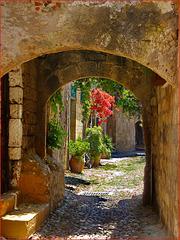 Spring in Rhodes - (612)