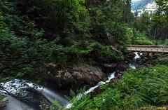 Der Gutach-Wasserfall oberhalb Triberg