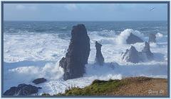 Belle Ile en Mer 7