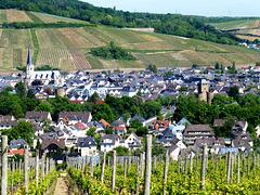 Blick auf Ahrweiler