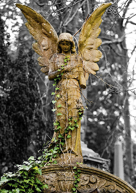 Angel, Cathcart Cemetery