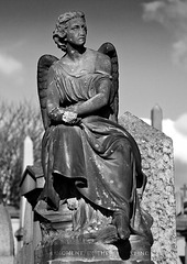 Angel, Glasgow Necropolis