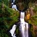 Triberger Wasserfälle (PiP)