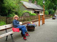 Trenau bach arbennig Cymru - Rheilffordd Ffestiniog  - Tan Y Bwlch