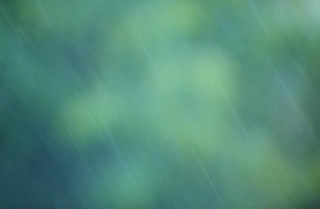 texture - rain in the garden