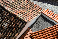 roofscape 15