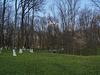 Верховня, В парке Усадьбы Ганских / Verkhovnya, The Estate of  of Evelina Ganskaya, In the Park