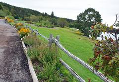Der Zaun bei Green Gables