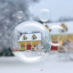 Boule magique(s)