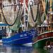 Die Greetsieler Krabbenkutterflotte