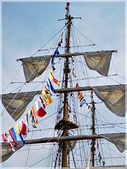 Le Gloria (bateau Colombien) à Saint Malo (35)