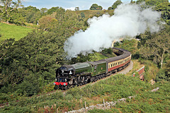 Peppercorn class A1 60163 TORNADO climbing past Darnholme with the 09.31 Grosmont - Pickering service NYMR 25th September 2021.