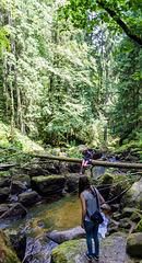 Fotoshooting am Oberlauf der Triberger Wasserfälle (PiP)