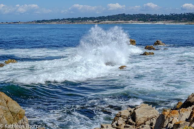 17 Mile Pacific Coast Wave