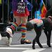 San Francisco Pride Parade 2015 (6383)