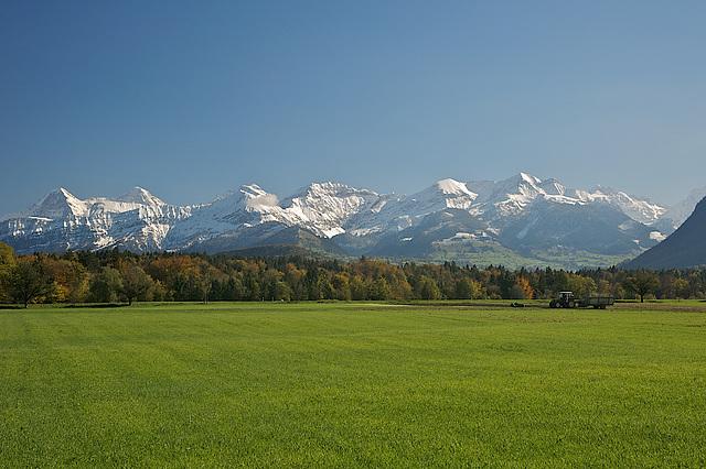 Les Alpes Bernoises