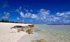 La plage des tortues pip